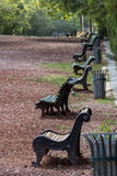 Rad av bänkar i parkera Arkivfoto