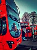 Rad av bussar Royaltyfria Foton