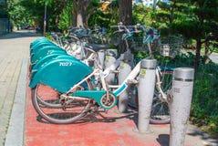 Rad av cyklar för hyra i en sydkoreansk stad Royaltyfria Foton