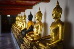 Rad av den guld- buddha statyn på Wat Pho Arkivbilder