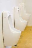 Rad av den offentliga toaletten för utomhus- pissoarmän, vita pissoar för Closeup I royaltyfri foto