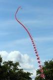 Rad av drakar sammanfogat flyga tillsammans. Arkivfoton