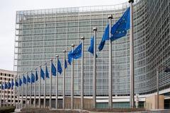 Rad av europeiska fackliga flaggor för E som. - framme flyger av administrativt Royaltyfri Bild