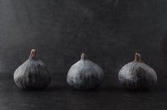 Rad av fikonträd på svart Royaltyfria Bilder