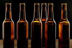 Rad av iskalla bruna ölflaskor utan etikett royaltyfri foto