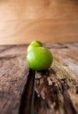 Rad av limefrukt Arkivbild