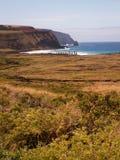 Rad av Moai vid havsståenden Fotografering för Bildbyråer