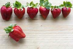 Rad av nya jordgubbar Arkivfoton