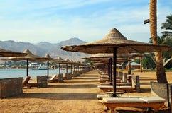 Rad av parasoller på stranden Royaltyfria Bilder