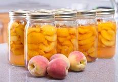 Rad av persikor på burk Royaltyfri Bild