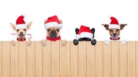 Rad av Santa Claus hundkapplöpning Arkivfoton