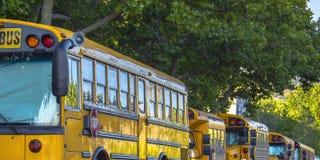 Rad av skolbussar som parkeras på gatan arkivbild