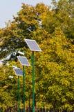 Rad av sol- drev gatailluminationsenheter i parkera med träd Arkivfoton
