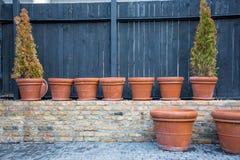 Rad av stora och små krukavaser eller behållare för floristry som ordnar och arbeta i trädgården - blommor, buskar eller träd itu Royaltyfria Bilder