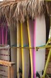 Rad av surfingbrädor för hyra på sjösidabränningklubban royaltyfria foton
