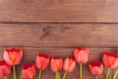 Rad av tulpan på träbakgrund med utrymme för meddelande Fotografering för Bildbyråer