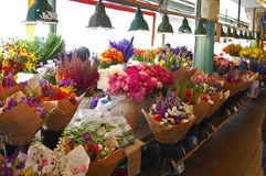 Rad på rad av ny-snitt blommor Fotografering för Bildbyråer