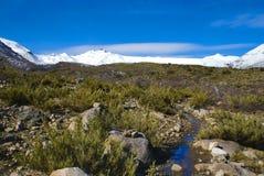 Radal Siete Tazas nationalpark Arkivfoto