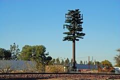 Radar Disguised as a Tree. Radar - radio antenna disguised as a tree - horizontal orientation Stock Photo