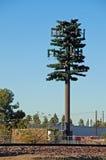 Radar travestito come albero Fotografia Stock