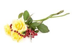 Radband och gula rosor på vit royaltyfri foto