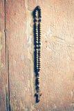 Radband som hänger på den gamla träväggen Royaltyfri Bild