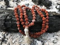 Radbandbönpärlor på askaaskabakgrunden Rudraksha mala mantra 108 pärlor arkivbilder