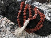 Radbandbönpärlor på askaaskabakgrunden Rudraksha mala mantra 108 pärlor royaltyfria bilder