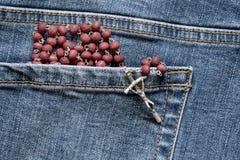 Radbandet i den tillbaka jeansen stoppa i fickan arkivfoto