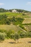 Radda in Chianti - Ancient palace and vineyards stock photo