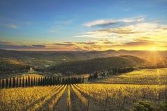 Radda in Chianti vineyard and panorama at sunset. Tuscany, Italy. Radda in Chianti vineyard and panorama at sunset in autumn. Tuscany, Italy Europe royalty free stock images