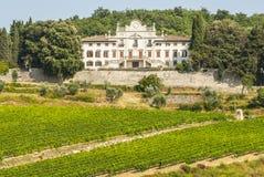 Radda im Chianti - alter Palast und Weinberge Lizenzfreies Stockbild