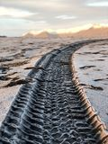 Raddrucke auf Diamantstrand in Island lizenzfreie stockfotos