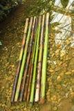 Radeau en bambou Photo stock
