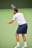 Radek Stepanek Stock Images
