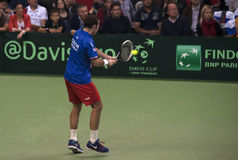 Radek Stepanek-8 Royalty Free Stock Photos
