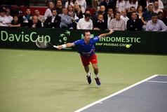 Radek Stepanek-1 Royalty Free Stock Image
