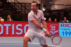 Radek Stepanek (CZE) Stock Image