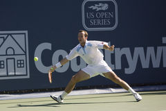 Radek Stepanek at the Los Angeles Tennis Open Royalty Free Stock Image