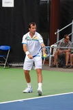 Radek Stepanek Stock Photography