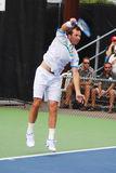 Radek Stepanek Royalty Free Stock Photography