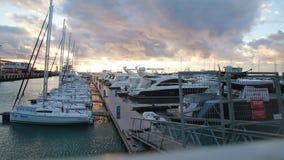 Raden av lyx seglar i Sochi port, solnedgång Markera ` ingen inkräkta ` på en ingång stock video