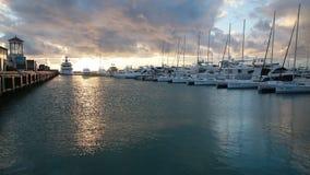 Raden av lyx seglar i Sochi port, solnedgången, det lugna havet, Ryssland stock video