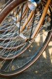 Raden av parkerade tappningcyklar cyklar för hyra på Fotografering för Bildbyråer