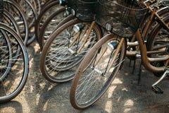 Raden av staden parkerade cyklar cyklar för hyra på Arkivfoto