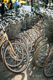 Raden av staden parkerade cyklar cyklar för hyra på Royaltyfri Bild