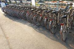 Raden av staden parkerade cyklar cyklar för hyra på Fotografering för Bildbyråer
