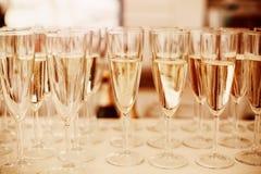 Rader av Champagne Glasses Served på händelse Royaltyfria Bilder