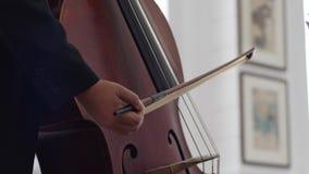Rader av en violoncell med pilbågen, makrodetalj av musikinstrumentet stock video