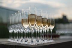Rader av exponeringsglas med champagne som är förberedd för mottagande Fotografering för Bildbyråer
